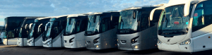 INCHIRIERI FLOTA MaxiBus Travel